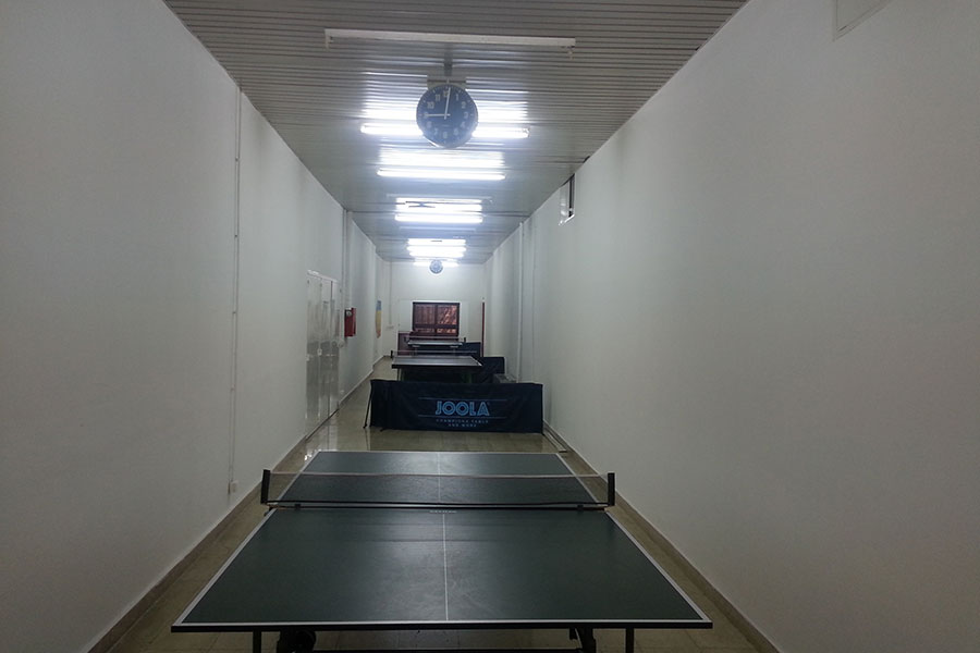 institute-igalo-table-tennis